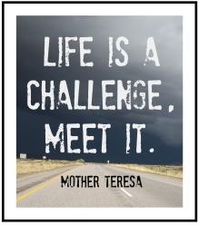 life-is-a-challenge-meet-it